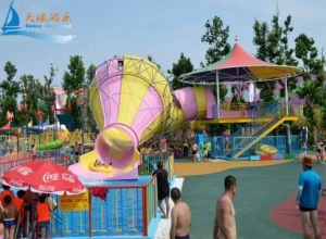 Kid′s Trumpet/Amusement Park Water Slide pictures & photos