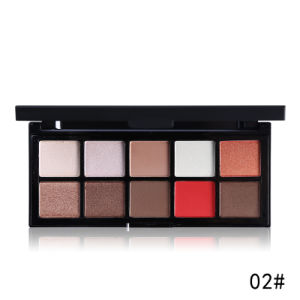 Professional Makeup 10 Colors Matte Eyeshadow Palette Nautral Mineral Powder Es0329 pictures & photos