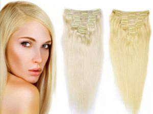 Cheap 100% Natural Brazilian Virgin Remy Clip in Human Hair Extension