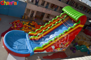 Pirate Water Slide with Pool Inflatable Slides Chsl379 pictures & photos