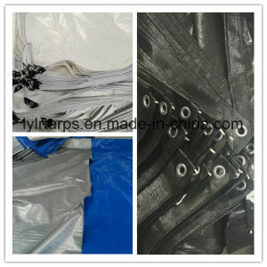 PE Tarpaulin Sheet for Tents, Truck Cover Tarpaulin pictures & photos