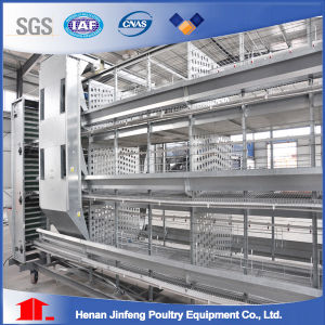 Hot Sell Jinfeng Automatic Chicken Cage for Layer Hens pictures & photos