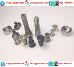 China Supplier Manufacture Metal Spring Pin pictures & photos