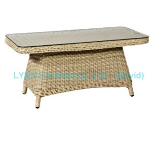 Rattan Coffee Table Wicker Tea Table pictures & photos