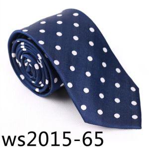 New Design Men′s Fashionable DOT Necktie (Ws2015-65) pictures & photos
