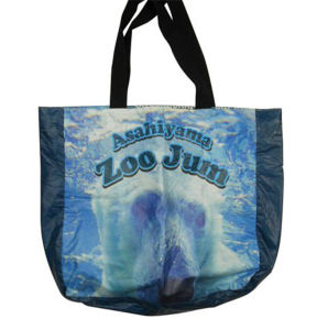 Tyvek Paper Tote Shopping Bag Pouch pictures & photos
