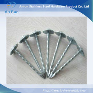 Stainless Steel Roofing Nails with Plastic Washer pictures & photos