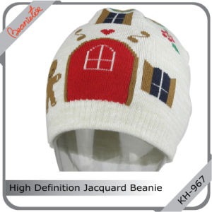 High Definition Jacquard Beanie Hat