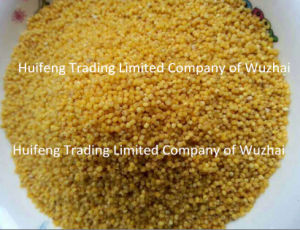 Chinese Yellow Millet for Exporting