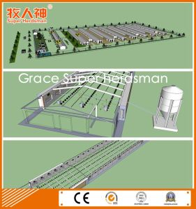 Modern Automatic Poultry Equipment with Free Design & Prefab Shed Construction pictures & photos