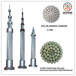 ACSR Bare Conductor, Aluminum Conductor Steel Reinfored Cable