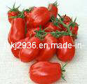 Pure Tomato Paste in 850g Can