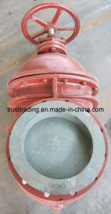 Marine Cast Iron Gate Valve pictures & photos