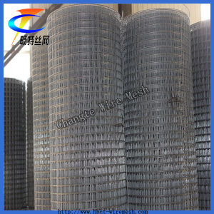 Cheap Galvanized Welded Wire Mesh ISO9001 Factory (CT-4) pictures & photos