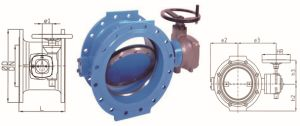Engineering Doulbe Eccentric Butterfly Valve for Drinkng Water pictures & photos