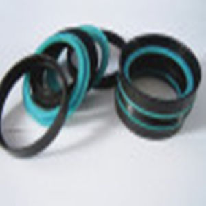 Standard or Nonstandard Das Compact Piston Seals with Excellent Quality pictures & photos
