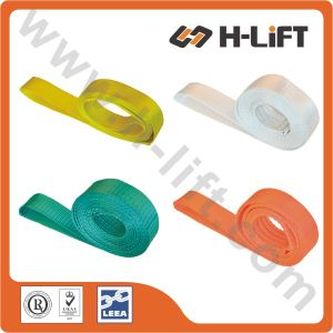 Customized Single Use Lifting Sling / One Way Webbing Sling (WSES) pictures & photos
