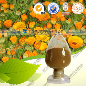 Natural Marigold Extract with Lutein & Zeaxanthin pictures & photos