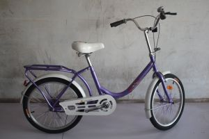 Single Speed Lady Bike Factory/ Cheap Adult Bicycle in China pictures & photos