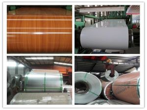 Ral Color PPGI/Prepainted Galvanized Steel Coil for Building Material