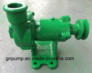 Super Mini Water Pump B25-25-80 pictures & photos