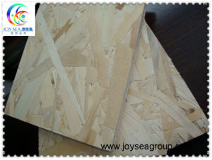 Cheap OSB Panels for Construction pictures & photos