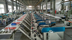 Automatic Noodle Bundling & Packing Machine (BJWD -CLKZQZD-100) pictures & photos