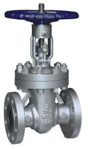 Casting Valve (HS-V-004) pictures & photos