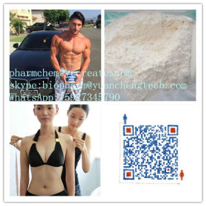 Fat Burning Testosterone Cypionate on Raw Steroid pictures & photos