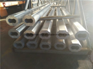 Aluminum Profiles for Hydraulic Gear Pumps pictures & photos