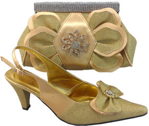 Newest Women Shoes Matching Bag CSB1014-Gold