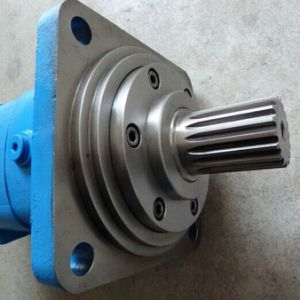 Bm3s Orbit Hydraulic Motor with Disk Valve pictures & photos