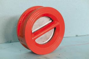 Double Plate Rubber-Coated Check Valve pictures & photos