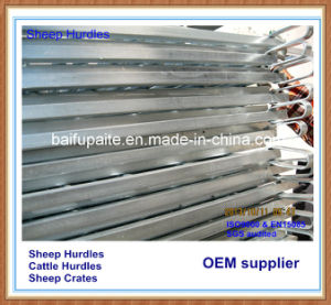 Agricultural Products Sheep Hurdles pictures & photos
