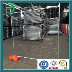 Australia Temporary Fencing pictures & photos
