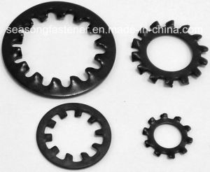 Stainless Steel Serrated Lock Washer / Tooth Washer (DIN6797A, J) pictures & photos