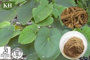 Kingherbs′ 100% Natural Kava Kava Extract/Piper Methyticum Extract pictures & photos