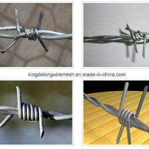 Stainless Steel Barbed Wire (Razor Wire) Kdl-29 pictures & photos