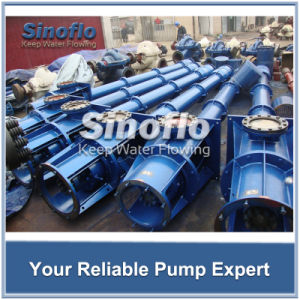 Long Axis Overhung Vertical Turbine Spindle Drainage Pump pictures & photos