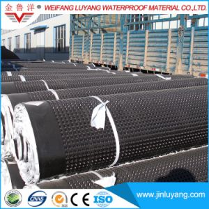 High Quality HDPE Dimple Drain Board for Roof Garden