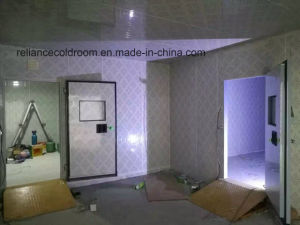 Deep Freezer Cold Room for Frozen Food pictures & photos