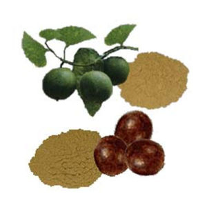 Natural Sweetner: Momordica Grosvenori Extract/80% Mogroside (FH-C-047) pictures & photos