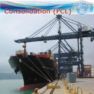 Transportation / Consolidation / Sea Shipment Logistic Agent (Middle East) pictures & photos