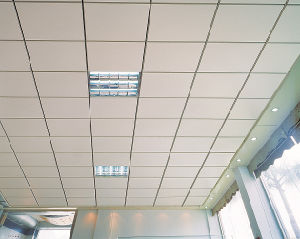 Open Frame Ceiling Series Lay in Ceiling pictures & photos