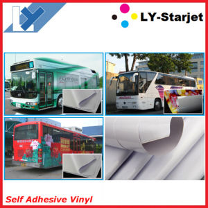 Printable Self Adhesive Vinyl, Printing Vinyl (SAV) pictures & photos