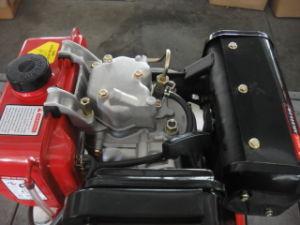 Vertical Single Cylinder Diesel Engine Set (ETK194F) pictures & photos