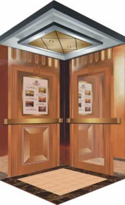 Fjzy-High Quality and Safety Home Lift Fjs-1633 pictures & photos