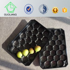 Popular Wholesale USA Mexico Canada High Quality Custom Metric Pet Fruit Tray Liners pictures & photos