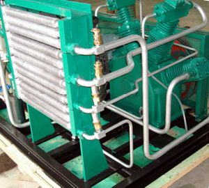 CNG Compressor LPG Compressor LNG Compressor Nitrogen Compressor (Dw-1.75/2-200) pictures & photos