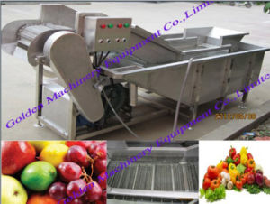 China Stainless Steel Vegetable Brush Washing and Peeling Machine pictures & photos